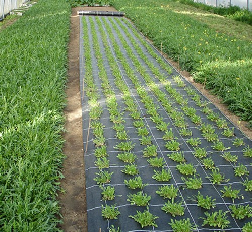 садовый геотекстиль