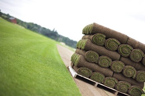 Применение биоматов для обустройства газонов