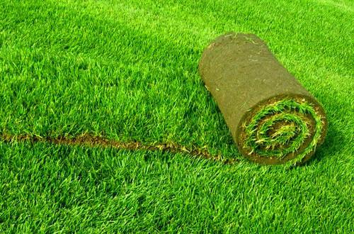 Купить биоматы для газона по цене производителя в Москве и регионах