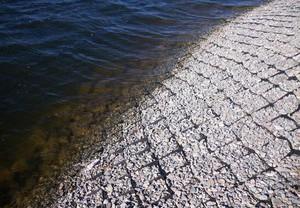 Георешетка для берега