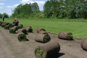 Технические характеристики биоматов для газона