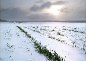 Применение геотекстиля в укрытии зерна
