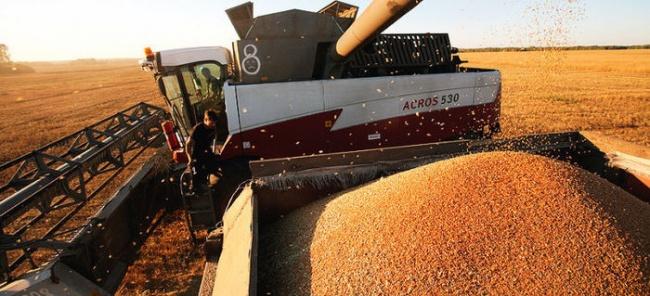 Сельхозэкспорт