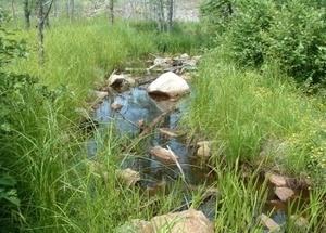 Геотекстиль для ручья
