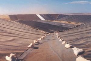 Экологическая безопасность геотекстиля