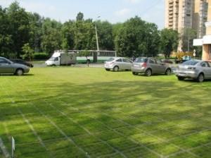 Георешетка дает возможность создавать эксплуатируемые газоны