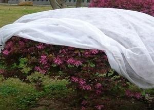 Геотекстиль 300, 350 для укрытия роз