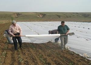 Геотекстиль для сельскохозяйственного производства
