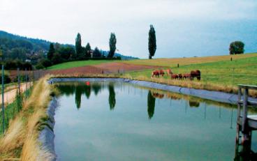 резервуар лошади